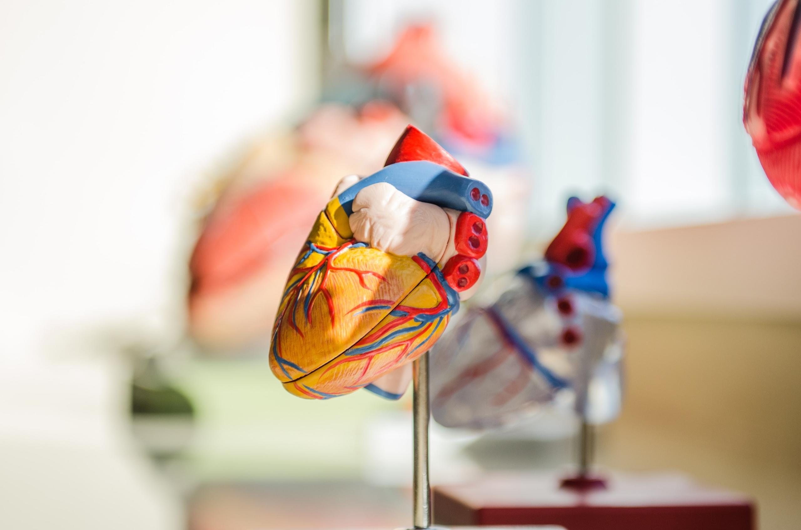 Cardiovascular Research LSHTM-CTU
